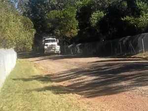 Highway koala exclusion fence 'killing' wildlife
