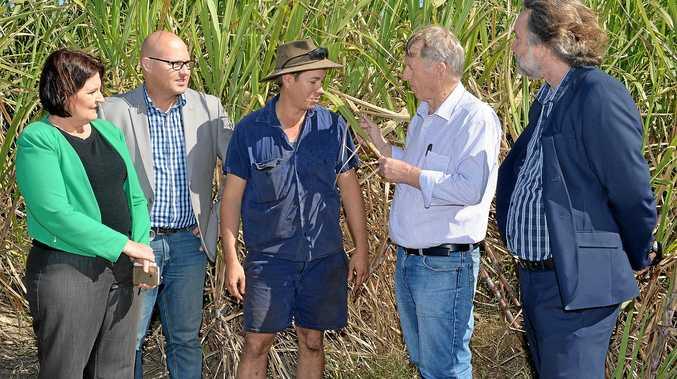 ANNOUNCEMENT: Member for Mackay Julieanne Gilbert, Queensland Treasurer Curtis Pitt, farmer Phil Deguara, Member for Mirani Jim Pearce and Bio Processing Australia executive director John Lockhart.