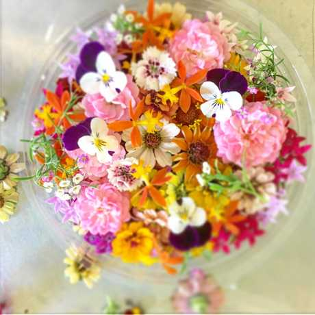 Example of some of the edible flowers Simone Jelley from Pretty Produce dishes up.