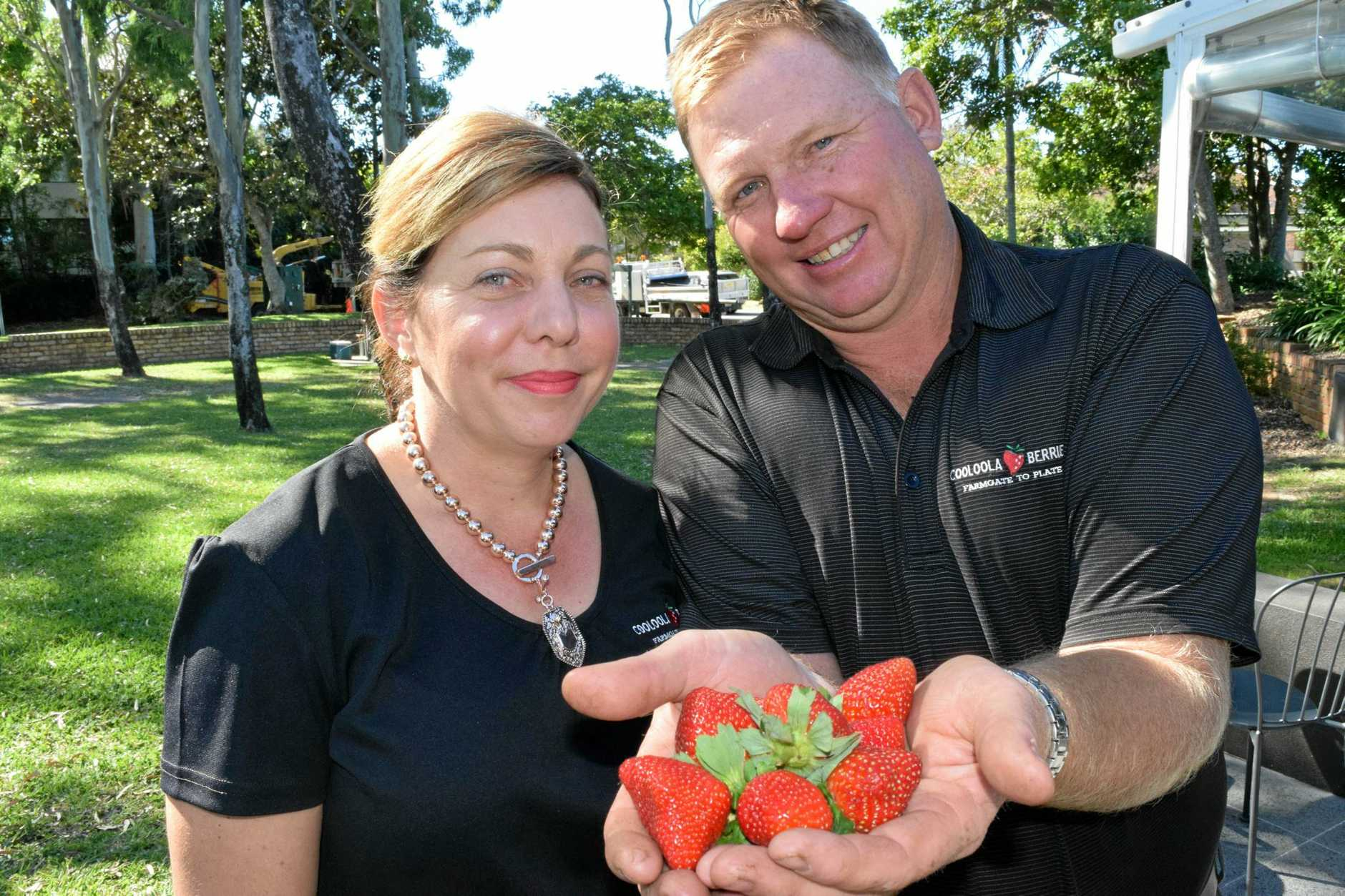 HAND PICKED: Kim and Jason Lewis from Cooloola Berries promote buying and selling local.