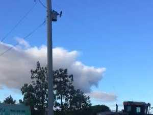 Scene of power line incident on Burnett Hwy