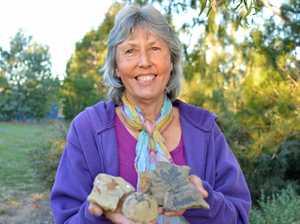 Brisbane Valley fossil find rocks scientist