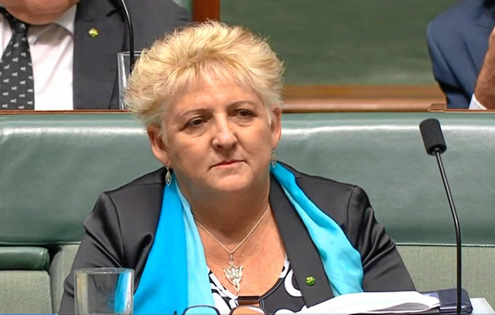 Member for Capricornia did not appear impressed with the State Budget.