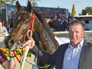 Jumbo Prince chases Ipswich Cup crown