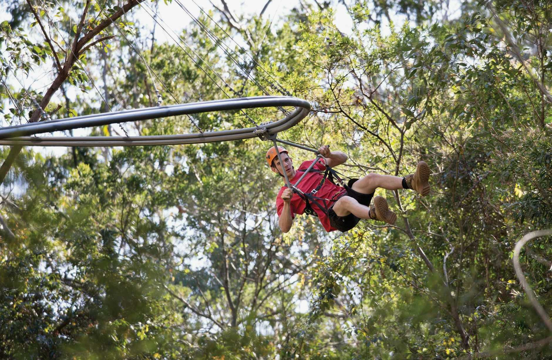 A zipline could be in the works as part of plans for the Botanic Gardens.