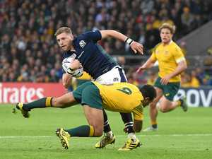 Scottish coach confident of toppling Wallabies