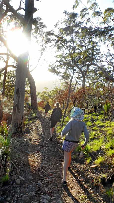 Walking on Mt Archer. Fitness / lifestyle.      Photo Frazer Pearce / The Morning Bulletin