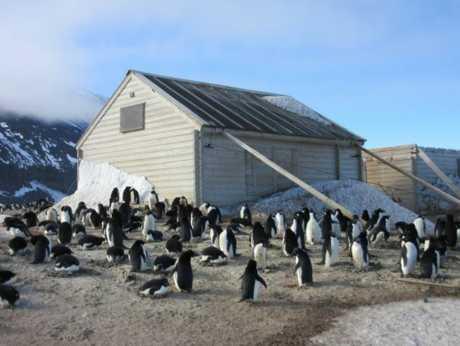 A hut at Cape Adare.