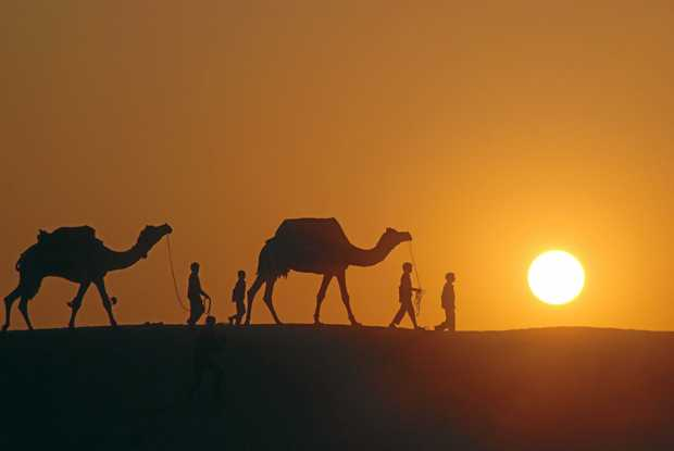 A group of men lead their camels through the  desert.