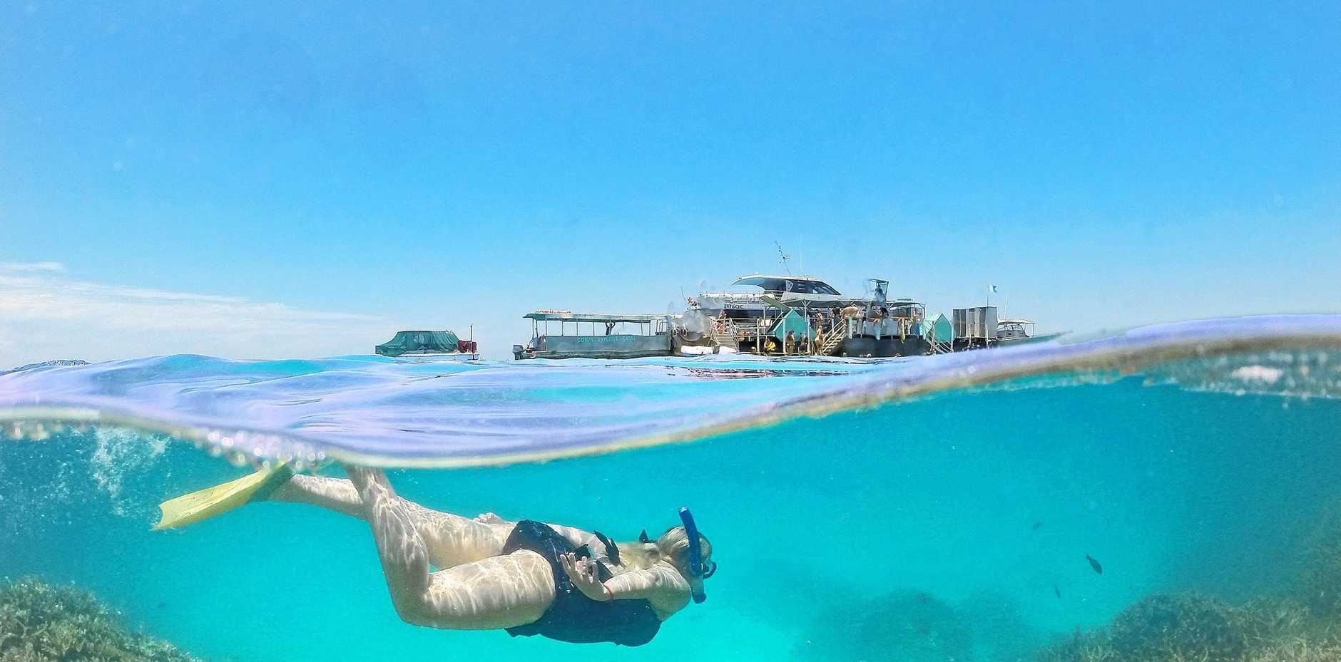 The World's first Instameet was held on Lady Musgrave Island.
