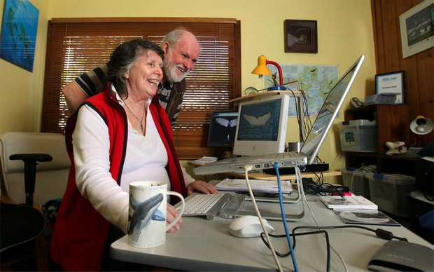 Marine scientists Trish and Wally Franklin hard at work researching their passion - whales.