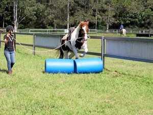 Buderim hosts first regional horsemanship competition