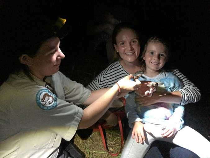 POPULAR DESTINATION: Ranger Jess shows turtle hatchlings to Jessica Larkin (left), the 30,000th visitor to Mon Repos during the 2015 nesting season, and daughter Laurah.