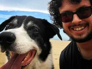 OPINION: Dogs do make a difference