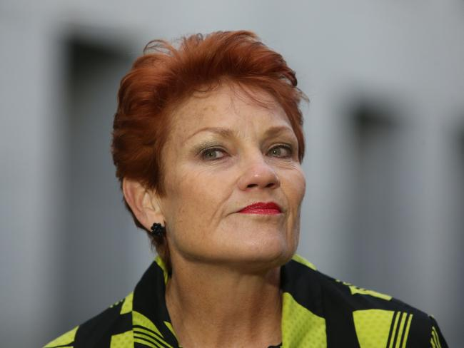 Senator Pauline Hanson speaking at today's press conference at Parliament House. Picture: Kym Smith