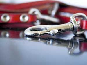 Man tied dog leash around neck to make girlfriend 'feel bad'
