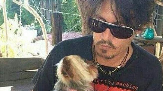 Johnny Depp with one of the tiny quarantine fugitives.