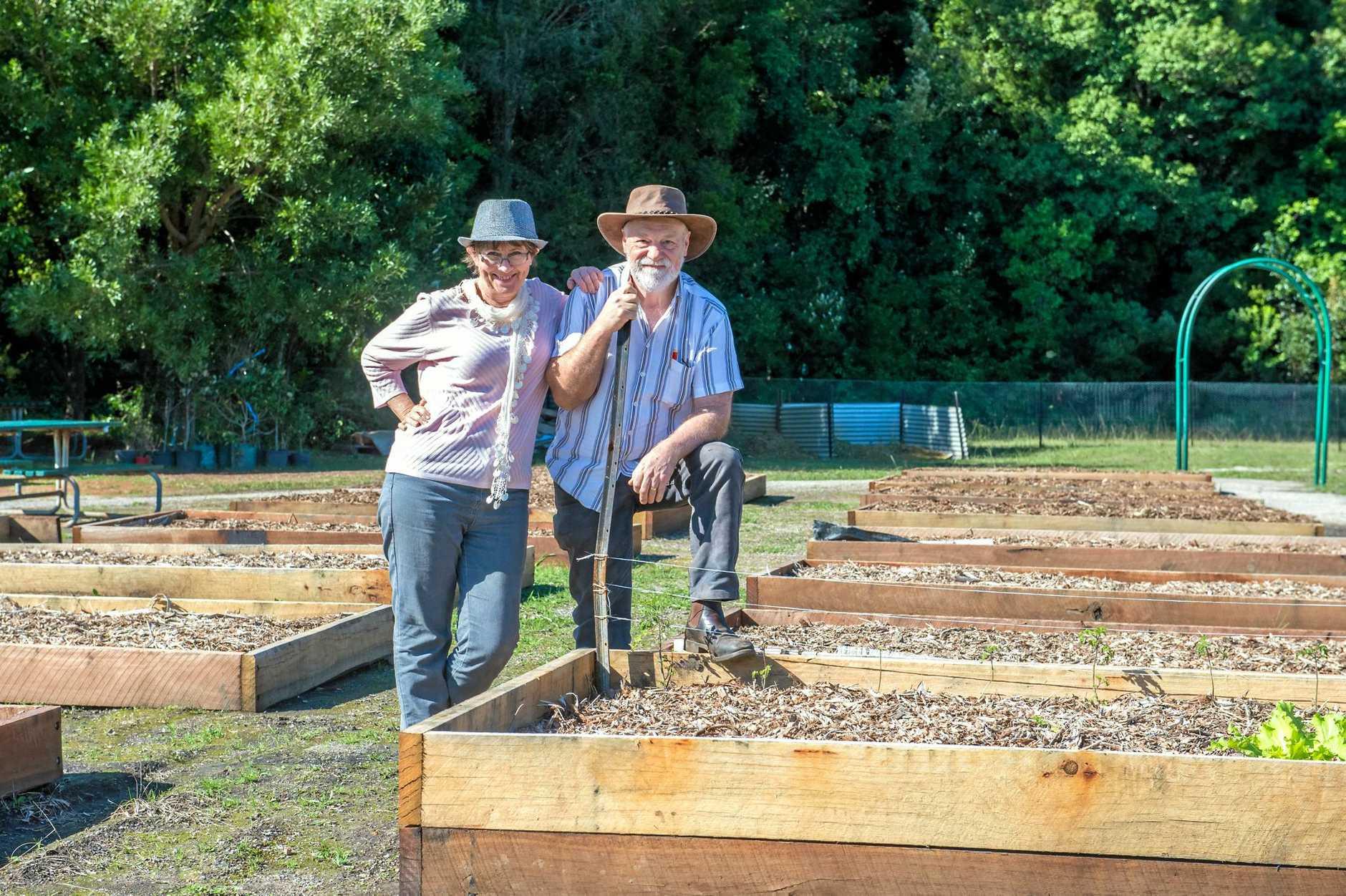 Christine and John Higgins, Boambee community garden June 1017