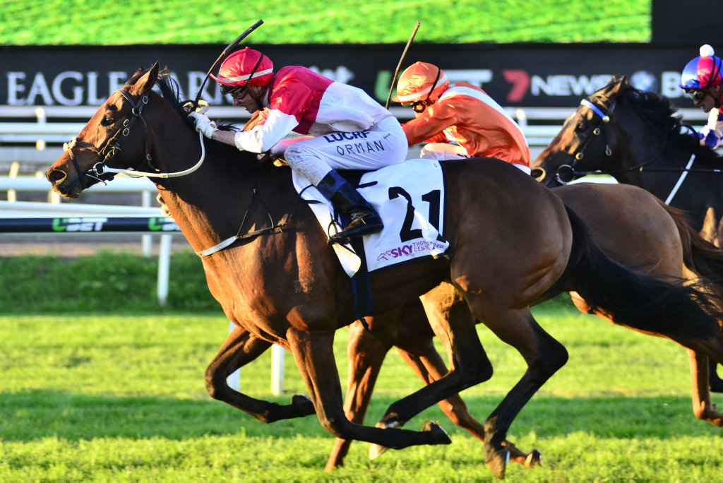Niccanova racing to victory in last month's Group Three Fred Best Classic at Eagle Farm for jockey Jimmy Orman.