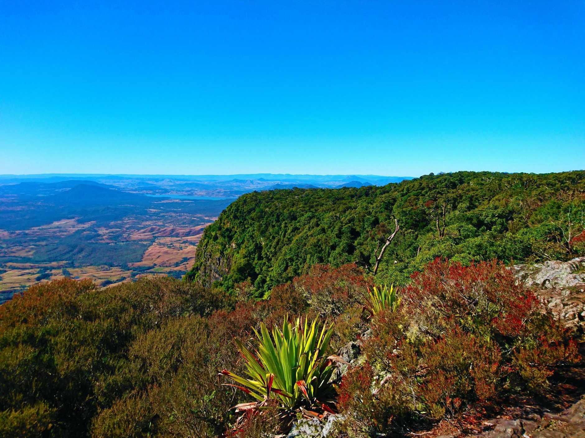 Bare Rock - Main Range National Park