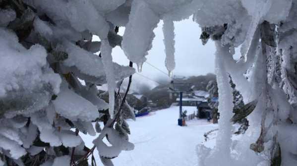 Snow at Victoria's Mt Buller. Photo: Instagram