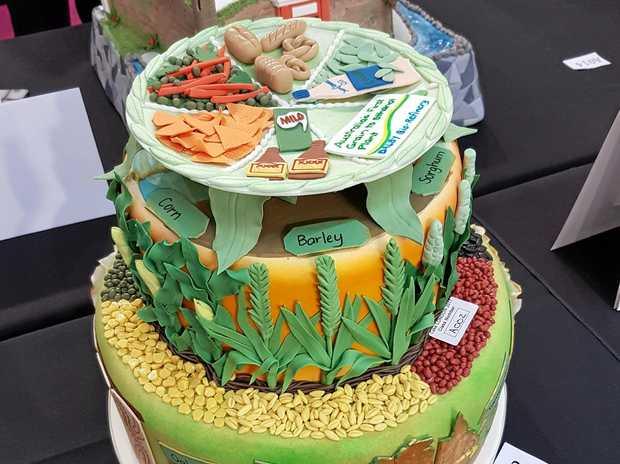 Cake Decorating Job In Uk : Worldwide success for Ann Shepherd Charleville Western Times