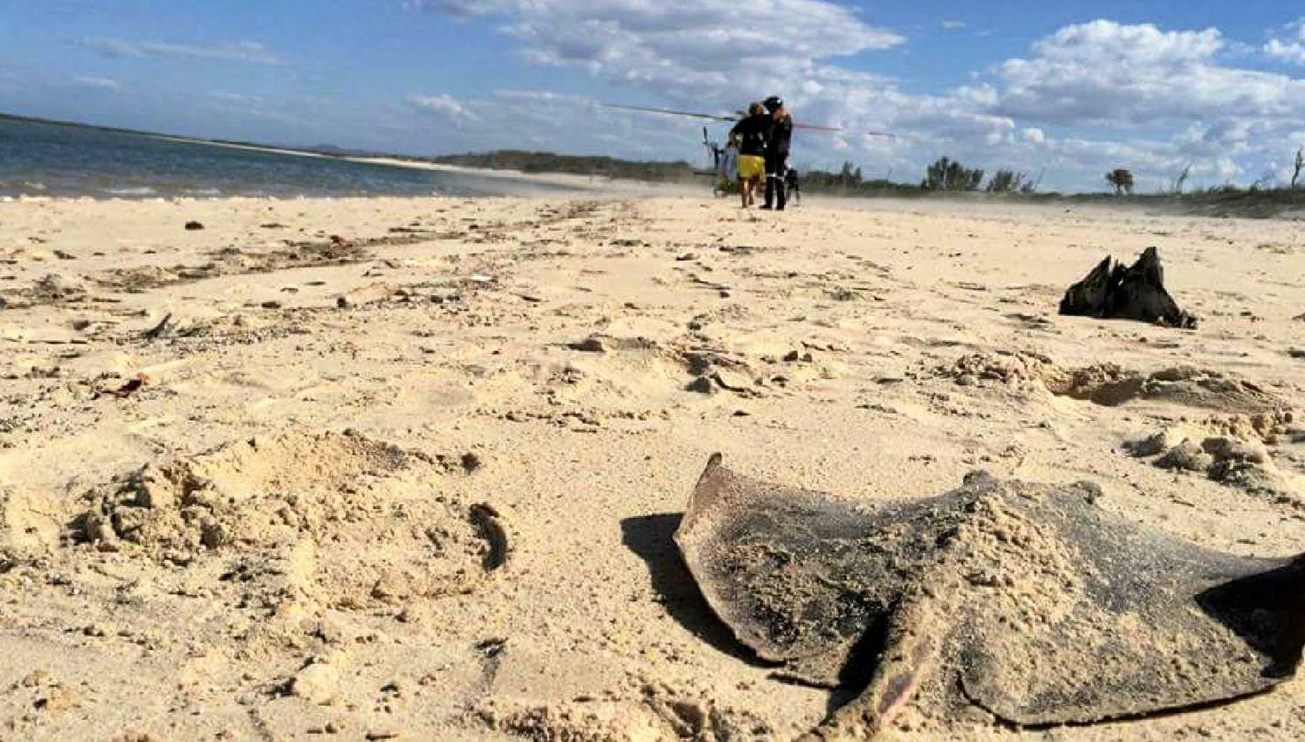 The stingray dragged a man underwater after he was pierced through the leg by the barb of a stingray.