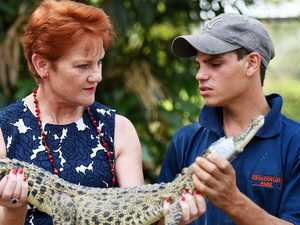 It's time to hunt NT crocs: Hanson