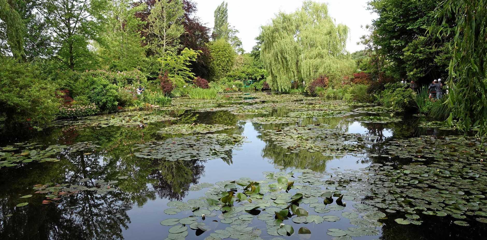 The beauty of Claude Monet's famous lily ponds.