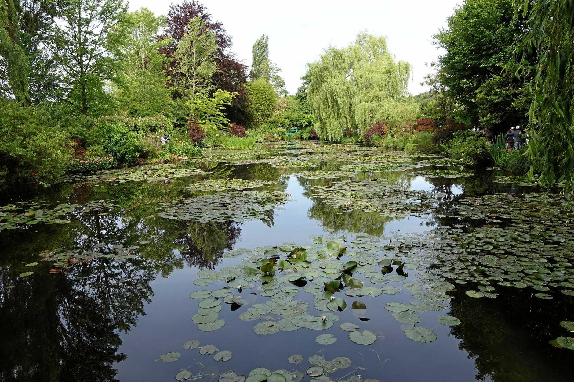 Monet's famous lily ponds.