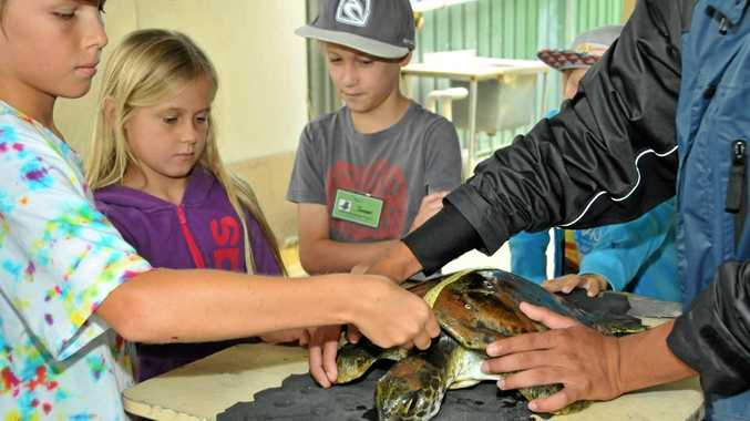 Coffs What's on for kids.