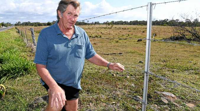 ACTION NEEDED: Ray Pratt wants signs erected along Elliott Heads Rd at Woongarra warning motorists of kangaroos in the area.
