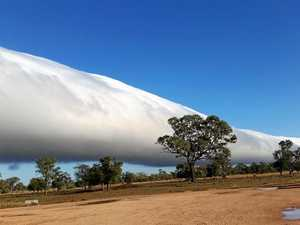 Morning glory clouds go viral as world looks to our skies