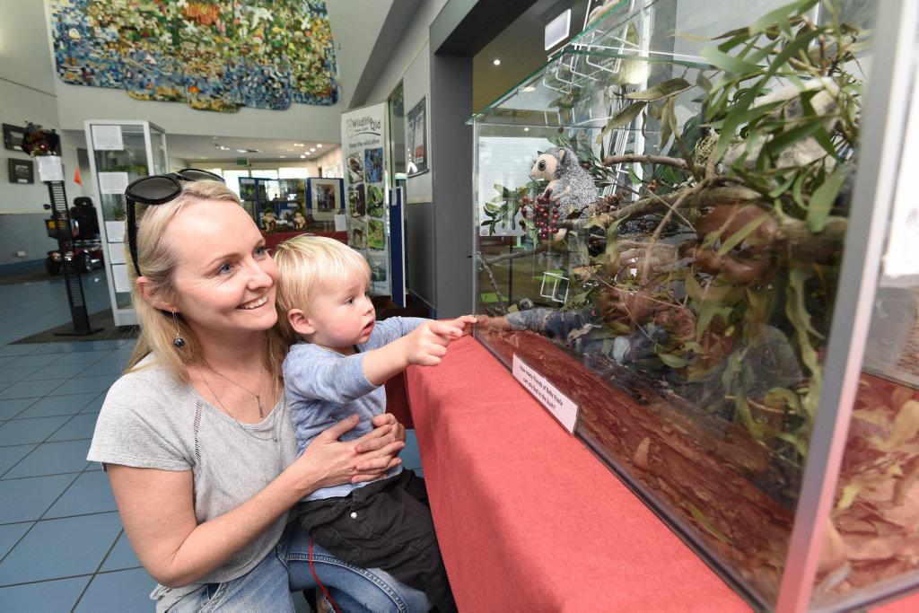 EDUCATION: Sera Ball and Sebastian, 1, check out the Fraser Coast Wildlife Preservation Society display at the Hervey Bay Library.