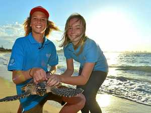 Teenagers become Sunshine Coast's sea turtle champions