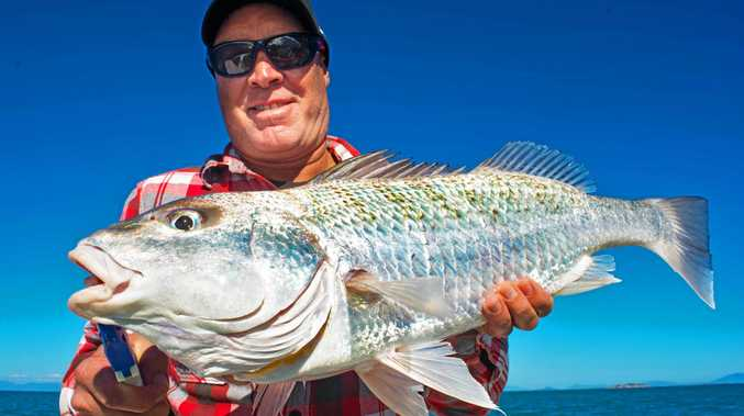 TOP CATCH: Rodd Melville a Whitsunday local with a nice grunter caught with Reel Addiction Sport Fishing.
