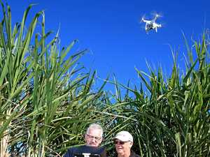 Farmer turns to drones to find what's hidden in the cane