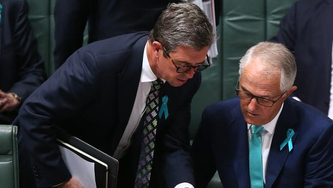 The Turnbull Government's ability to hold power is under threat by a High Court challenge over Nationals MP David Gillespie's right to be elected. Picture: Kym Smith