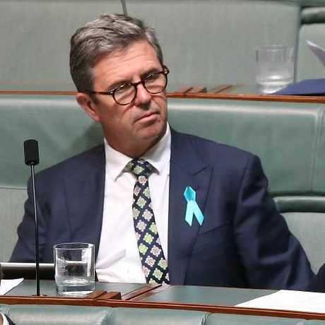 David Gillespie in Question Time. Picture Kym Smith