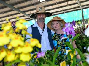 Expo grows for the love of green thumbs
