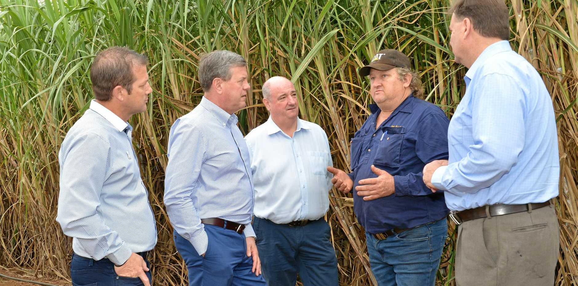 BIG ISSUE: Opposition leader Tim Nicholls at Mark Pressler's cane farm in Bundaberg yesterday.
