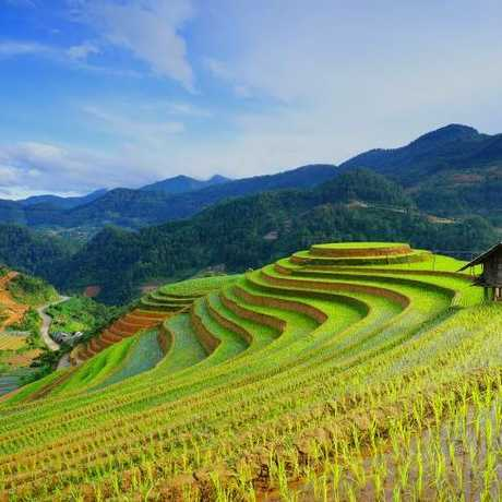 Vietnam's landscapes are reminiscent of Bali.