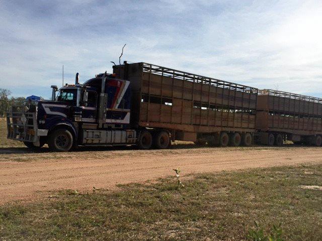 Caleb's Kenworth Truck