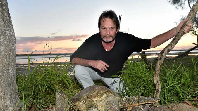 WHAT'S GOING ON? Steven Perrett is just one of many who have found multiple dead sea life washed up on Bribie shores.