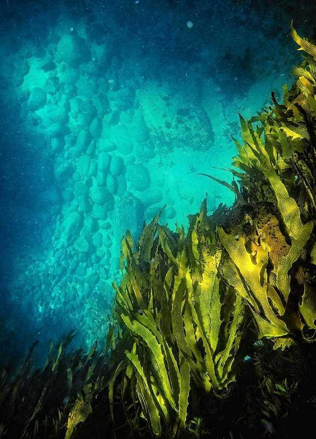 Shallow Depths by Drew Hopper.