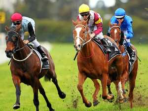 Top Sydney stable primed for raid on Queensland Cup