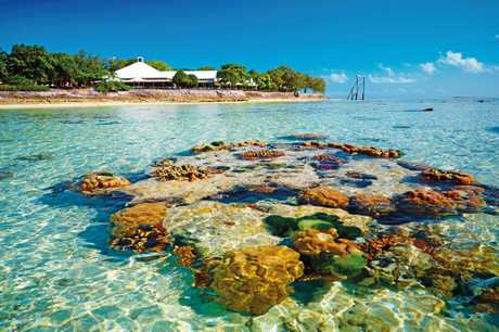 Heron Island is a beautiful spot off Gladstone .