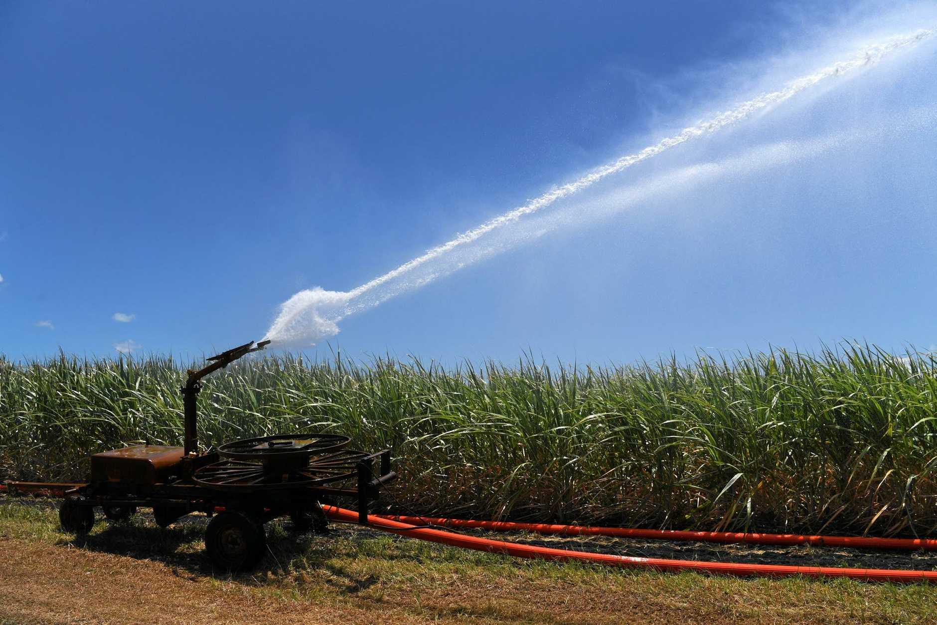 Burnett MP Stephen Bennett told the LNP State Convention increasing power prices had left irrigators