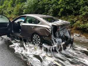 Eel truck slimes US highway with 3.4 tonnes of 'hagfish'