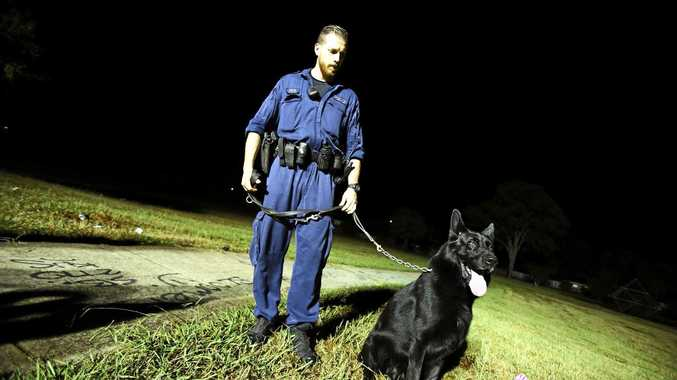 A police dog tracked down a man who fled the scene after a crash.